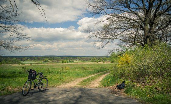 bike-1048135_960_720